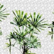 GLGE123A CUBIC PLANT