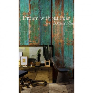 Dream Without Fear 6332016