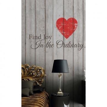 Find Joy 6332039