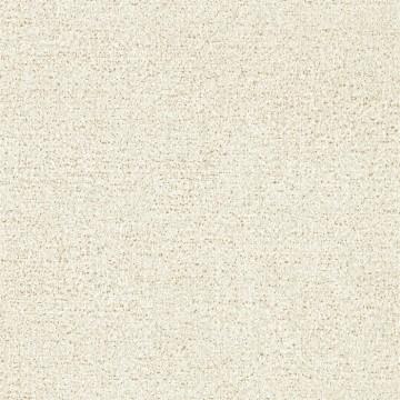 Kauri 312952
