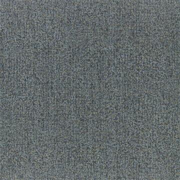 Kauri 312954