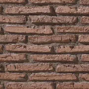 LADRILLO VIEJO PR485 ARCILLOSO