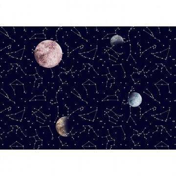 Galaxy Night Mural 8500161