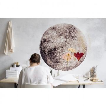 Full Moon Blue Mural 8500151