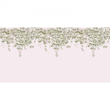 Classic Clematis Mural Wallpaper Pink