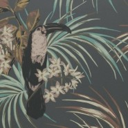 Le Toucan Charcoal 1907-135-05