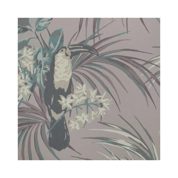 Le Toucan Rose 1907-135-02
