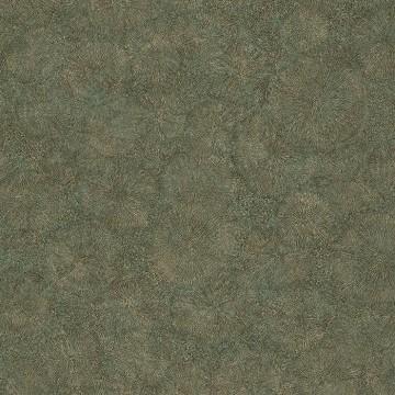 Fossilium 84517323 Vert