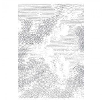 WP-621 Wall Mural Engraved Clouds