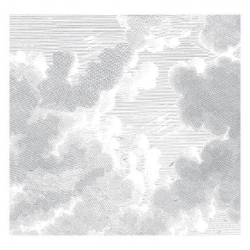 WP-636 Wall Mural Engraved Clouds