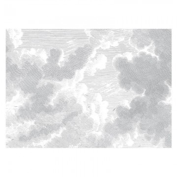 WP-651 Wall Mural Engraved Clouds