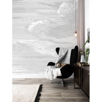 WP-620 Wall Mural Engraved Clouds