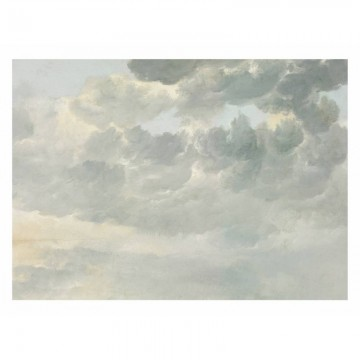 WP-230 Wall Mural Golden Age Clouds 1