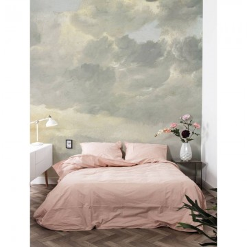 WP-216 Wall Mural Golden Age Clouds 1
