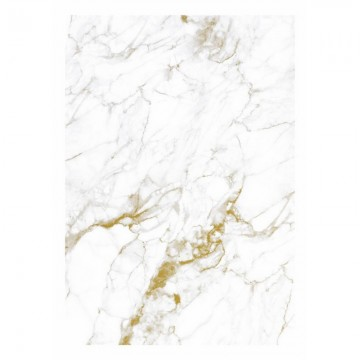 WP-554 Wall Mural Marble, White-Gold