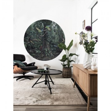 SC-072 Wallpaper Circle Tropical Landscapes