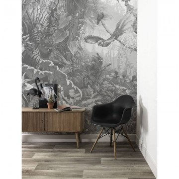 WP-605 Wall Mural Tropical Landscapes