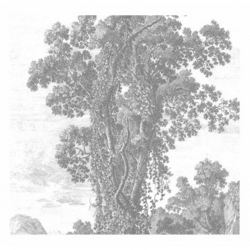 WP-318 Wall Mural Engraved Landscapes