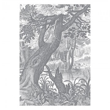 WP-615 Wall Mural Engraved Landscapes
