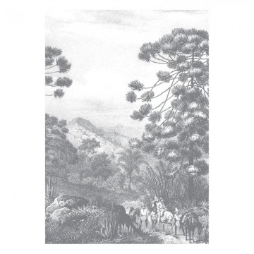 WP-618 Wall Mural Engraved Landscapes