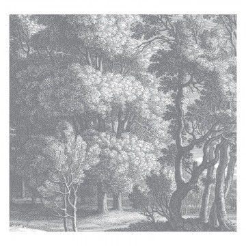 WP-632 Wall Mural Engraved Landscapes