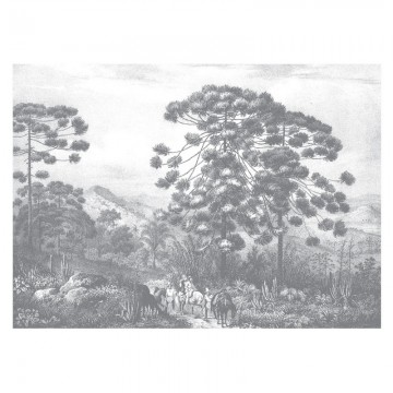 WP-648 Wall Mural Engraved Landscapes