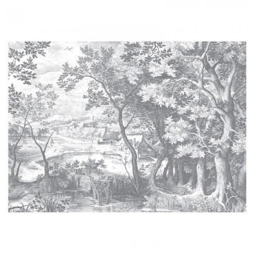 WP-649 Wall Mural Engraved Landscapes