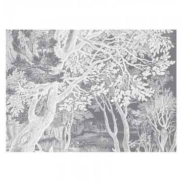 WP-656 Wall Mural Engraved Landscapes