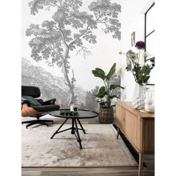WP-317 Wall Mural Engraved Landscapes