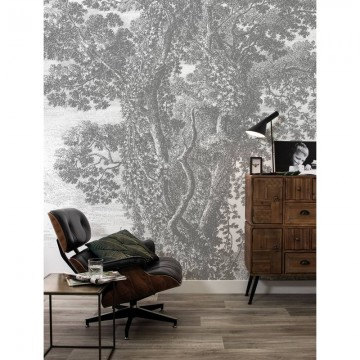 WP-323 Wall Mural Engraved Landscapes