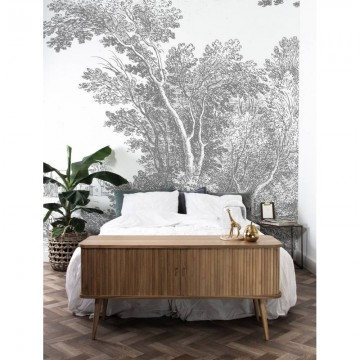 WP-326 Wall Mural Engraved Landscapes
