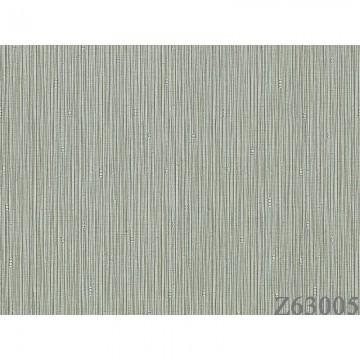 Z63005