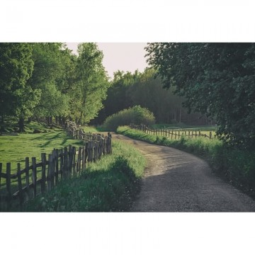 R16541 Wooden Fence