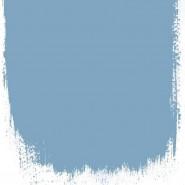 BORAGE FLOWER BLUE NO. 46 PAINT