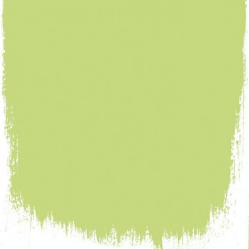 LIME TREE NO. 96 PAINT