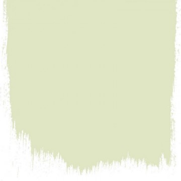 ARTICHOKE NO. 104 PAINT