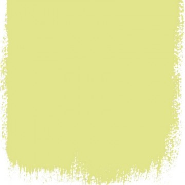 ALCHEMILLA NO. 112 PAINT