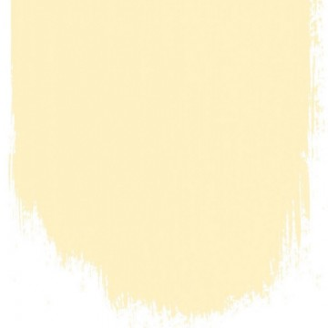CUSTARD CREAM NO. 117 PAINT