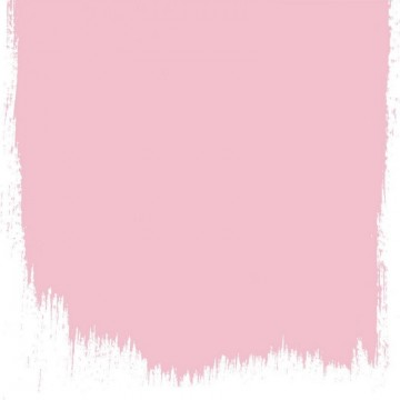 DIANTHUS PINK NO. 132 PAINT