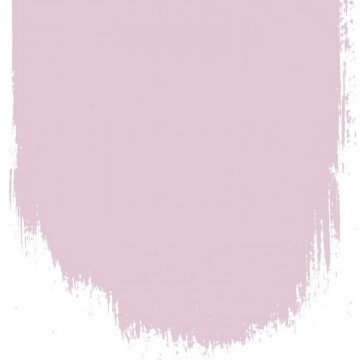 FADED BLOSSOM NO. 145 PAINT