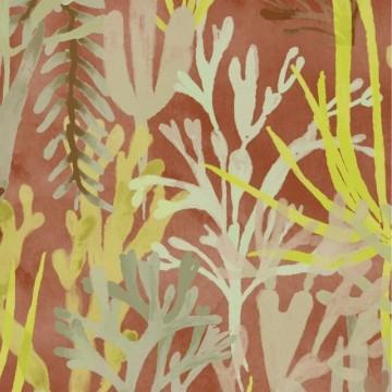 Algues TP303 02