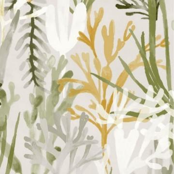 Algues TP303 06