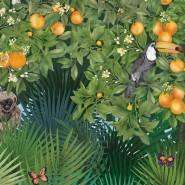 Orange Grove W7493-01