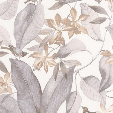 Delicacy Birdsong Taupe Gris 85389242