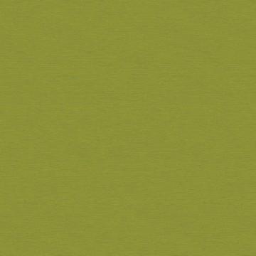Gini Lime OLI704