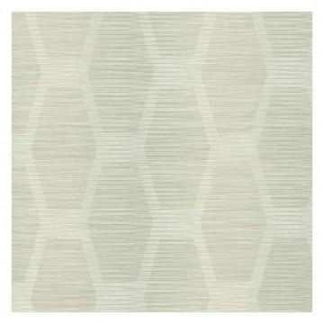 Congas Stripe Sure Strip CY1573