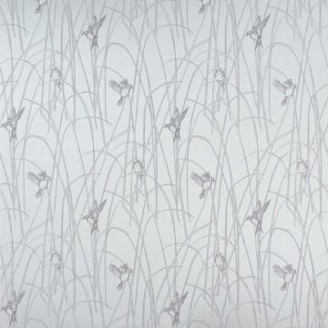 Reedbirds f7371-02