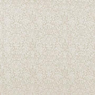 Pure Acorn 226062