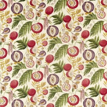 Jackfruit 226562