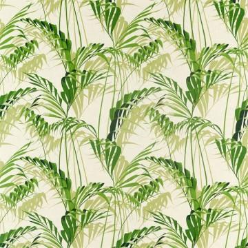 Palm House 226567